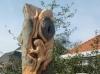 Kikkerboom